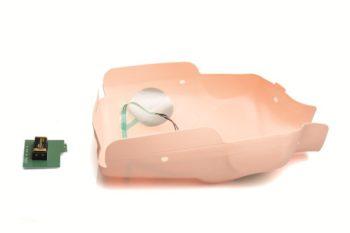 Little Anne AED päivityspakkaus